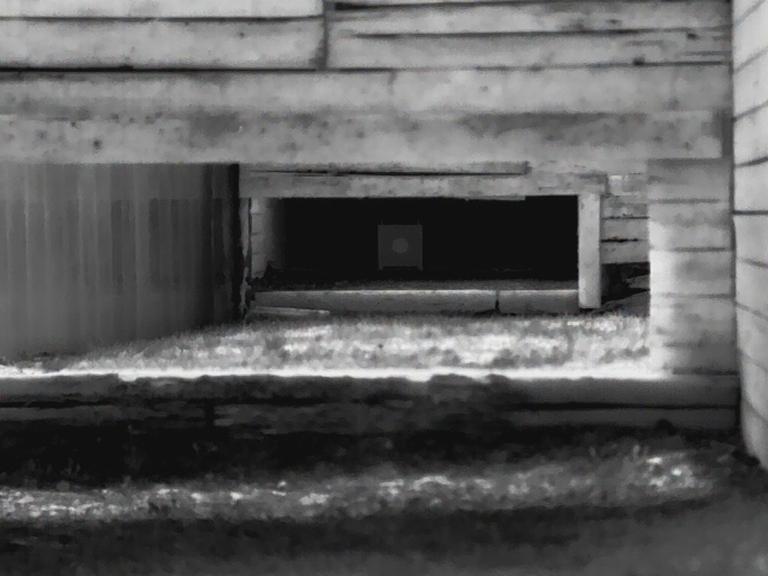 La straordinaria qualità dell'immagine del visote termico Calonox View per il cartello dei 50 metri. Il centro è in realtà nero e il resto del bersaglio bianco, ma la temperatura è identica e il Calonox nella sua elaborazione dell'immagine mostra i colori invertiti. L'infinita scala dei grigi data dal Software Leica LIO(tm) che equipaggia le leggendarie fotocamere Leica fa la differenza rispetto a qualsiasi altro visore termico.