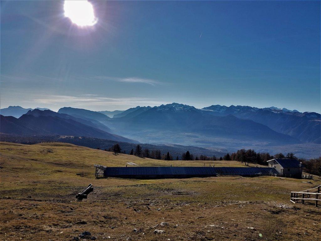La malga di Smarano domina la val di Non, dal monte Peller sopra la val di Tovel a tutto il  gruppo del Brenta. Le vacche sono tornate a valle già da settimane. In fondo al prato, l'anno scorso, avevo sorpreso uno jahrling che emergeva dalla nebbia in un'alba di inizio novembre.