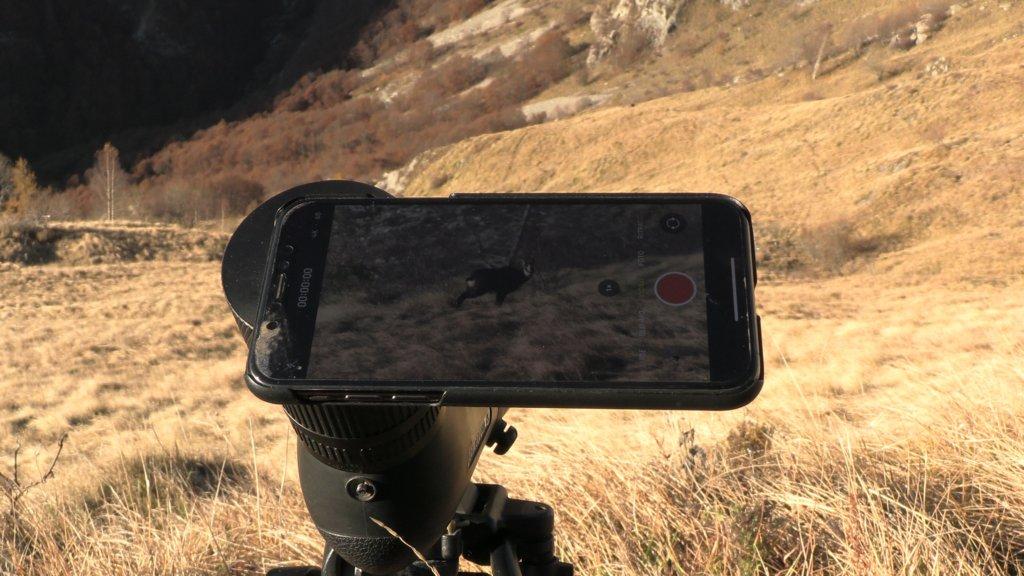 Il becco è un puntino lontano, ma appare in primo piano sullo schermo del telefono, ingrandito 50 volte dalle lenti del telescopio Leica.